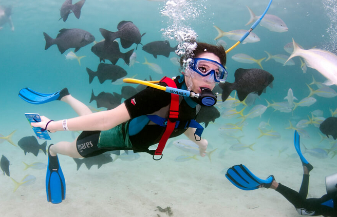 Riviera Maya and Costa Maya diving spots in Mexico review