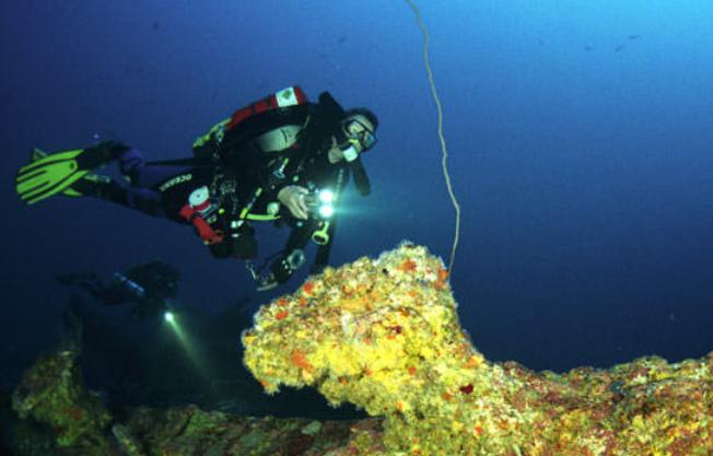 condor-reef-diving-spots