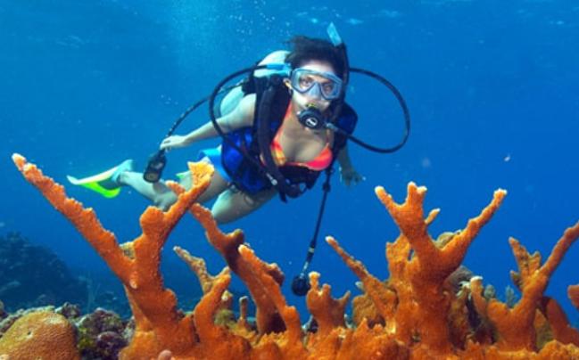 koh-russel-diving-spots